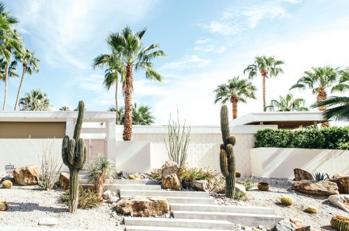 What to do in Palm Springs when you are not at the pool?