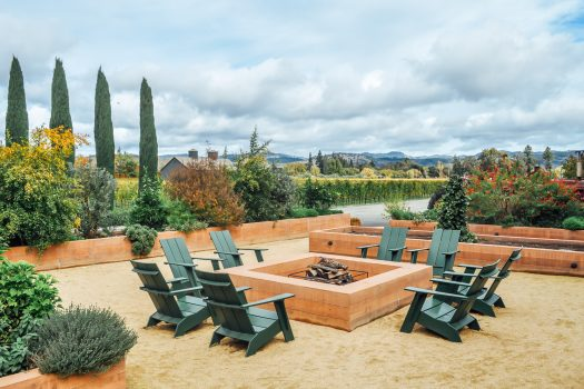 An Afternoon at Turnbull Winery